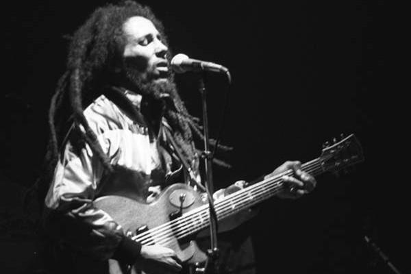 Nama Bob Marley dijadikan nama spesies parasit karang