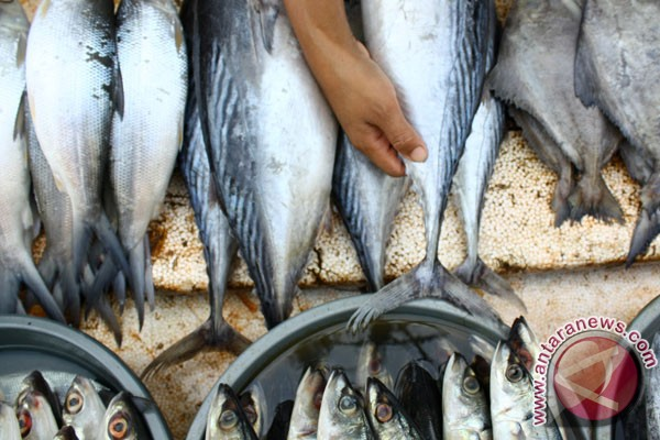 Indonesia`s fish exports forecast to rise this year