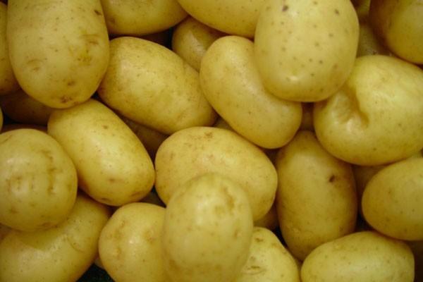 Peserta MasterChef ditantang menaklukkan kentang