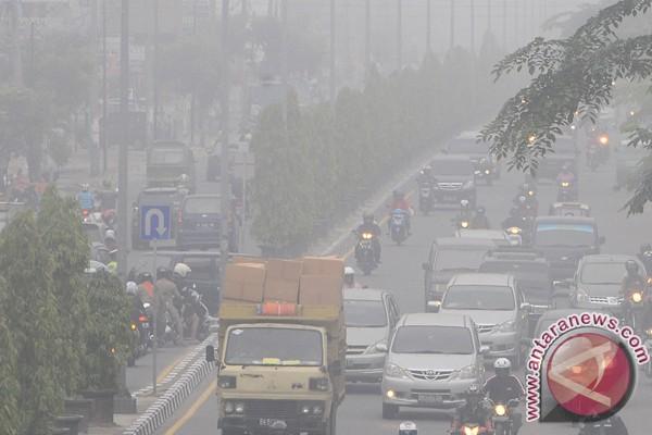 Satelit NOAA deteksi 244 titik panas di Riau