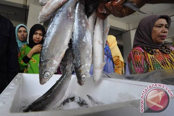 US main destination of Indonesia's fishery exports