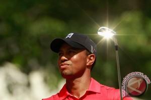 Tiger Woods tidak siap tampil di AS Terbuka