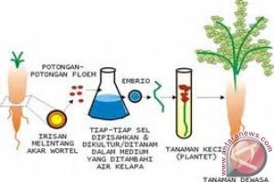 Indonesia-Jerman garap delapan proyek berbasis bioteknologi