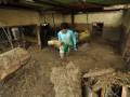 Warga berusaha mengumpulkan sisa barang dirumahnya yang hancur akibat diterjang banjir di Desa Boyangtongo Kabupaten Parigi Moutong, Sulawesi Tengah, Minggu (26/8). Banjir yang menerjang beberapa desa di Kecamatan Parigi Selatan Kabupaten Parigi Moutong, Sulawesi Tengah itu terjadi pada, Sabtu malam (25/8) dan mengakibatkan dua warga tewas, satu orang hilang, belasan rumah hanyut, ratusan rumah terendam lumpur serta menyebabkan arus lalu lintas di poros trans Sulawesi yang menghubungkan Sulawesi Tengah dengan Sulawesi Selatan putus total.(FOTO ANTARA/Mohamad Hamzah/12)