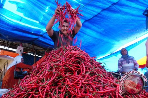 Harga cabe merah keriting naik