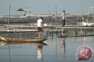 Air sungai di Agam tercemar mikrobiologi