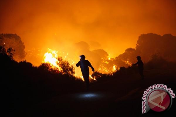Hutan lindung di Kabupaten Buleleng terbakar