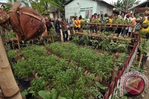 Banten dukung pengembangan KRPL