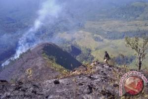Hutan Taman Nasional Gunung Rinjani terbakar