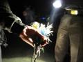 Seorang personil kepolisian Kota Palu, memperlihatkan busur panah yang digunakan warga Tatanga dan Tavanjuka dalam bentrok di Palu, Sulawesi Tengah, Rabu (10/10). Dalam bentrok itu, diperkirakan empat warga terluka karena terkena peluru senapan angin dan dumdum. (ANTARA/Zainuddin MN)
