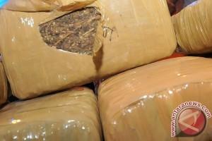 Polresta Pekanbaru gagalkan penyelundupan 30 kg ganja