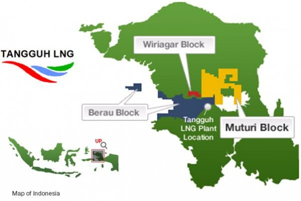 Tangguh LNG refinery plant stops operation for several weeks