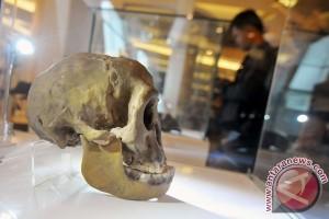 Tim geologi Bandung lakukan penggalian situs Wajakensis