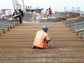 Sejumlah pekerja membangun jalan tol di kawasan Tanjung Priuk, Jakarta, Selasa (25/12). Pembangunan jalan tol antara kawasan Plumpang dan Cakung sepanjang 9km diperkirakan selesai awal tahun 2013. (FOTO ANTARA/Regina Safri)