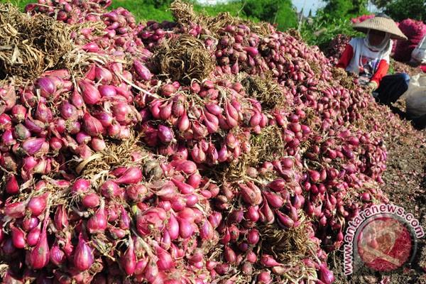 Harga bawang putih dan bawang merah meroket