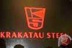 RUPST Krakatau Steel angkat komisaris utama baru