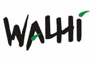 Walhi: masyarakat bersihkan keramba di Danau Toba