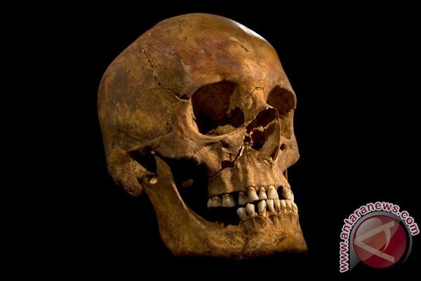Ilmuwan akan petakan genom Raja Inggris Richard III