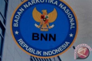 BNN musnahkan barang bukti dari lima kasus
