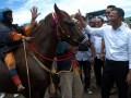 Menteri BUMN, Dahlan Iskan (2 kanan), menyapa joki cilik, saat menyaksikan Pacuan Kuda dengan joki cilik, di Arena Pacuan Kuda Angin Laut, Desa Penyaring, Kecamatan Moyo Utara, Sumbawa Besar NTB, Sabtu (16/). Pacuan kuda dengan joki cilik usia di bawah 10 tahun yang digelar Telkomsel bersama pemerintah daerah setempat tersebut, merupakan salah satu tradisi yang masih bertahan di Sumbawa NTB. (FOTO ANTARA/Eric Ireng)