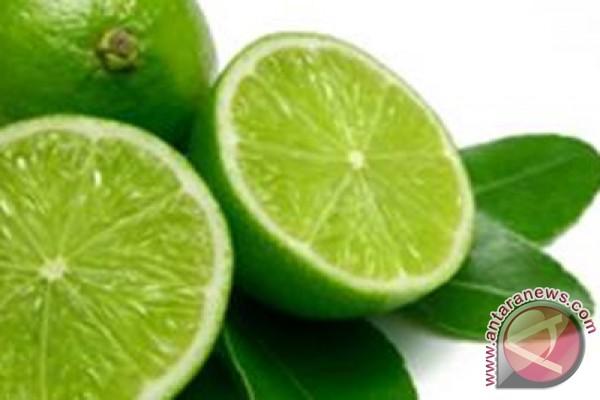 Jeruk nipis mengandung asam sitrat yang bisa menghambat pembentukan ...