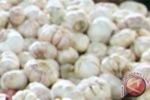 Bawang putih bermanfaat untuk susu formula