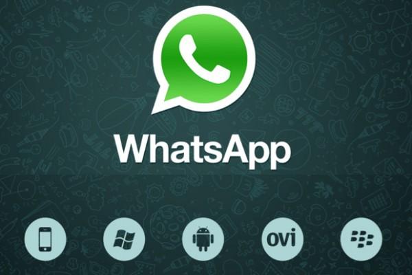 WhatsApp tambah kapasitas chat grup hingga 256 orang