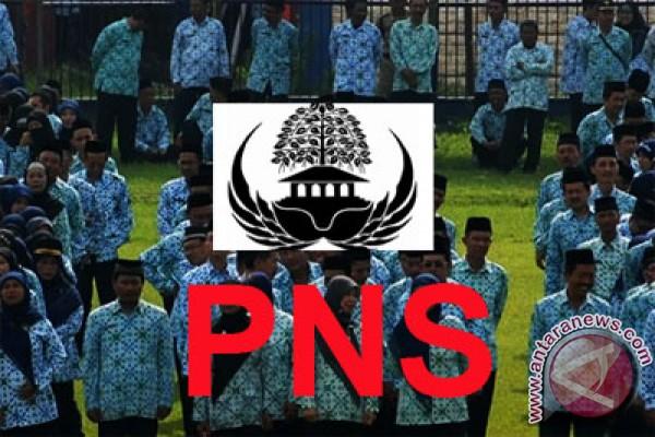 Lima kabupaten siap gelar seleksi CPNS 2013