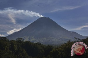Ekowisata lereng Merapi jadi subur