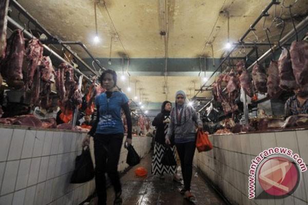 Inilah penjelasan tentang besaran impor daging sapi