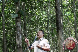 AS-Indonesia komitmen tingkatkan kerja sama perdagangan karbon