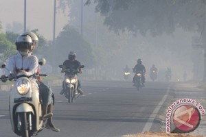Empat daerah di Riau berselimut asap