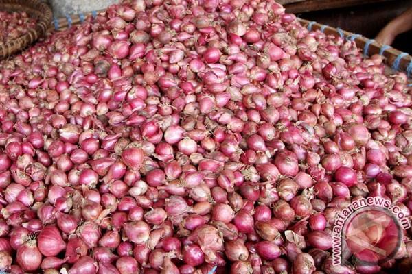 Bawang merah di Palu capai Rp70 ribu per kilo
