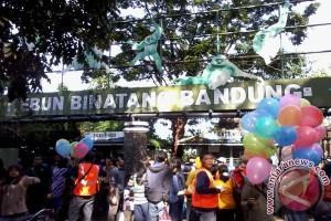 BBKSDA periksa kondisi semua satwa Kebun Binatang Bandung