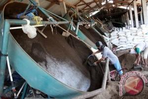 Program RTMPE dapat hentikan impor sapi