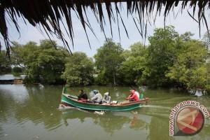 Ekowisata mangrove Bantul dilengkapi menara pandang