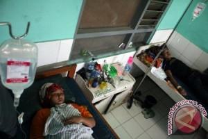 Puluhan warga Tulungagung terserang chikungunya