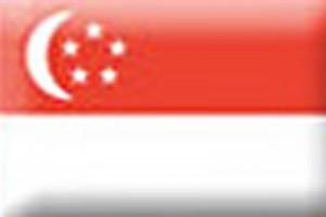 Singapura segera putuskan pembelian helikopter militer satu miliar dolar