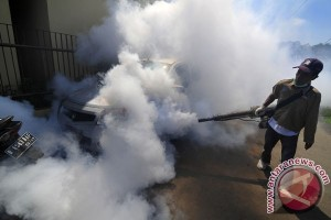 Virus Zika penyebab cacat lahir
