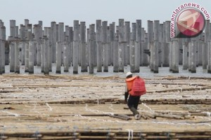Proyek Pelabuhan Kalibaru