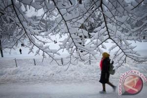 New York diselimuti salju, banyak penerbangan batal