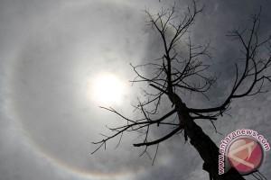 Kemenag: Jumat ini Matahari di atas kiblat
