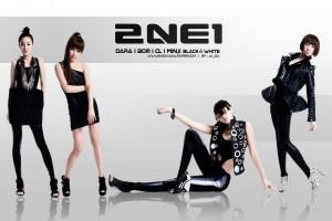 U.S. website picks 2NE1 as girl group to love