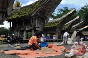 Tradisi Masyarakat Tana Toraja