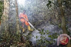 Kebakaran hutan jadi sorotan Global Forum Lanscape
