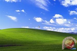 Pasar Windows XP masih 20 persen