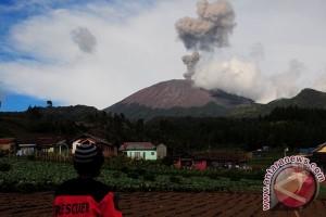 Abu vulkanik erupsi Gunung Sangeang selimuti NTT
