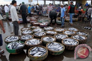 Indonesia government encourages fishermen to form business group