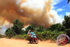 Pembakar lahan harus dihukum tegas