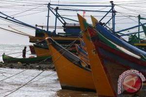 Harga ikan mas capai Rp40.000 per kilogram